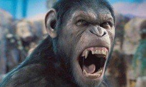 planète-des-singes-affrontement (3)